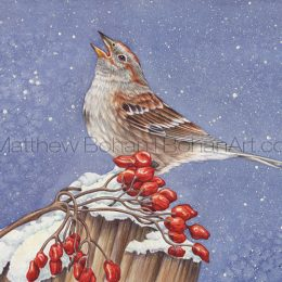 American Tree Sparrow (Transparent Watercolor on 140lb HP Paper about 7.5 x 10.5 in) Original Available