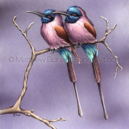 Carmine Bee-eaters (Transparent Watercolor on W&N 140lb NCP Paper 10 x 14 in) NFS
