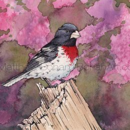 Rose-breasted Grosbeak on Stump (Transparent Watercolor & Ink on Arches 140lb HP Paper about 8 x 10 in) Original Available