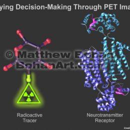 Molecular and Protein Models (Lightwave3d)