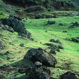 North Maui Coast, HI