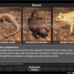 Desert Animal Biodiversity Interactive Module (Eon Vue, Photoshop, Flash)