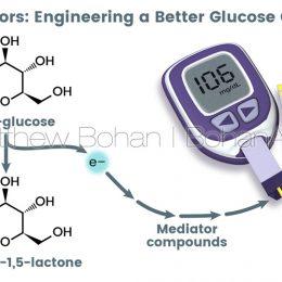 Biosensor/Glucosemeter (Lightwave 3d and Photoshop)